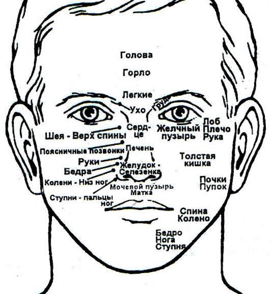 гомеопатия при гипотиреозе препараты