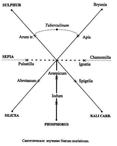Синтетическое изучение Natrum muriaticum